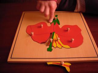 El puzzle de la flor, hoja y árbol