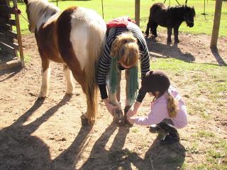 Con los ponis